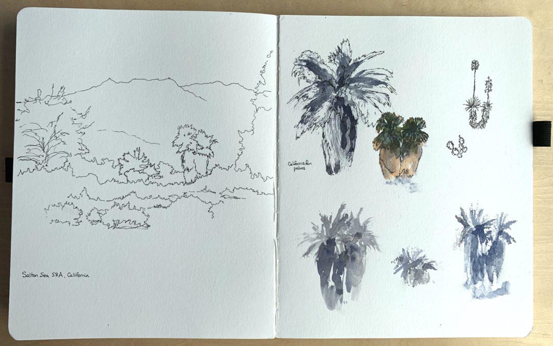 Painless Watercolor Planning, Part 2: Choose & Refine Your Painting Concept