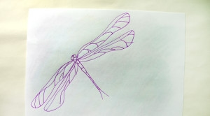 Drawing of dragonfly on back of crayon scribble.