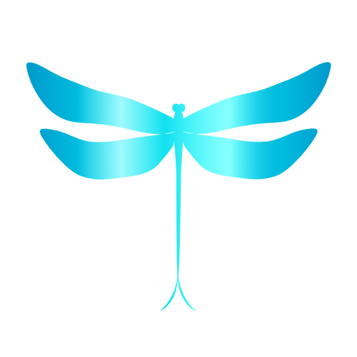 Dragonfly Spirit Studio