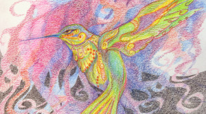 Hummingbird (colored pencil).