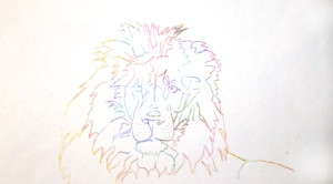 Multi-colored line drawing of lion from tracing.