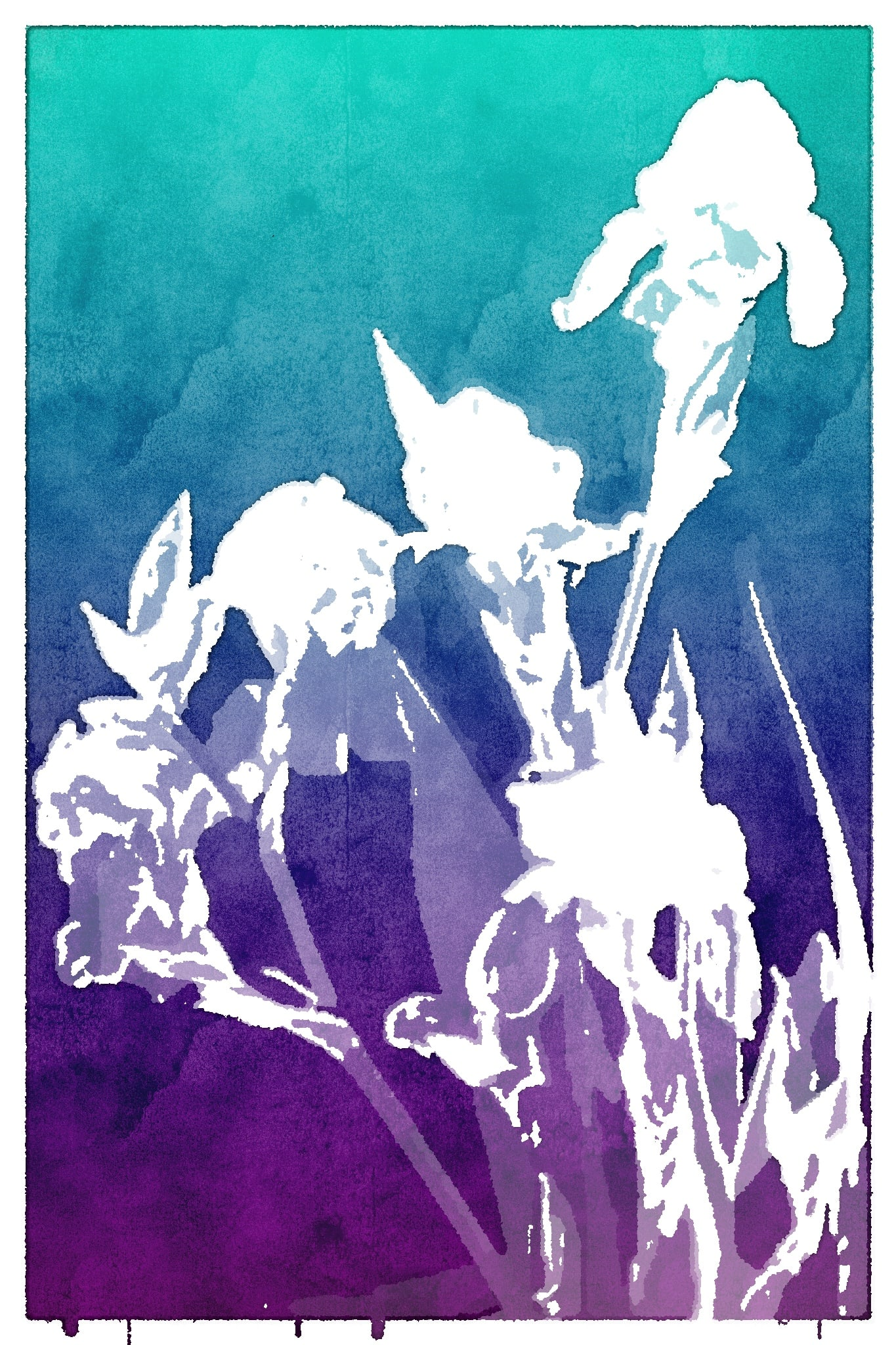 A photo of irises processed by Popsicolor. Makes it really easy to see just the big shapes!