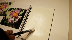 Liberally apply acrylic medium or glue to your journal page.